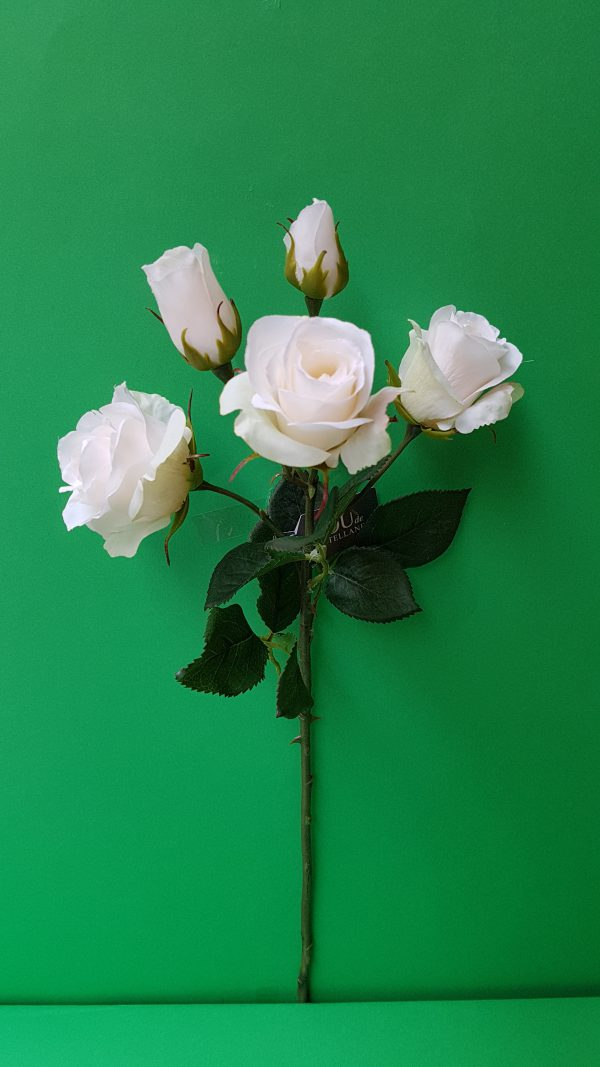 Amadeus Ramo Rosa x 5 fiori