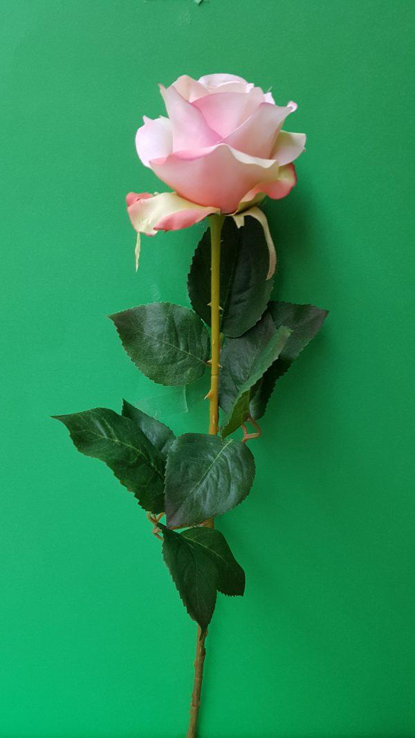 Ramo Rosa