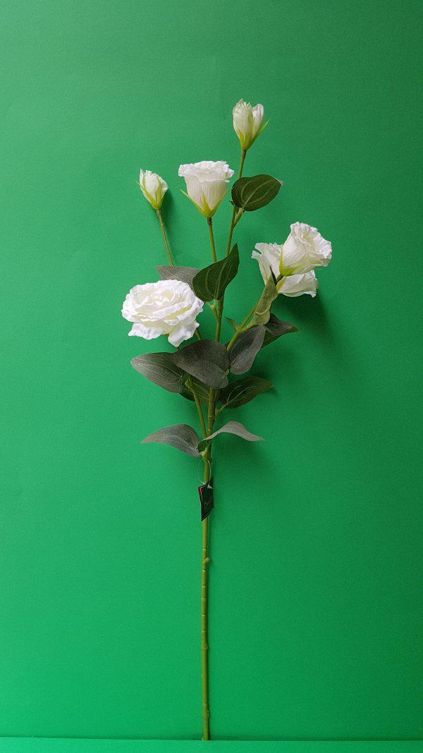 Ramo Lysiantus bianco