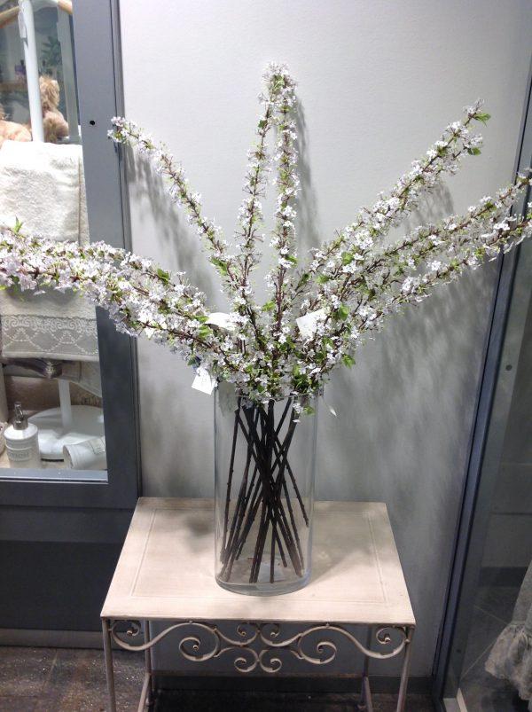 ramo biancospino