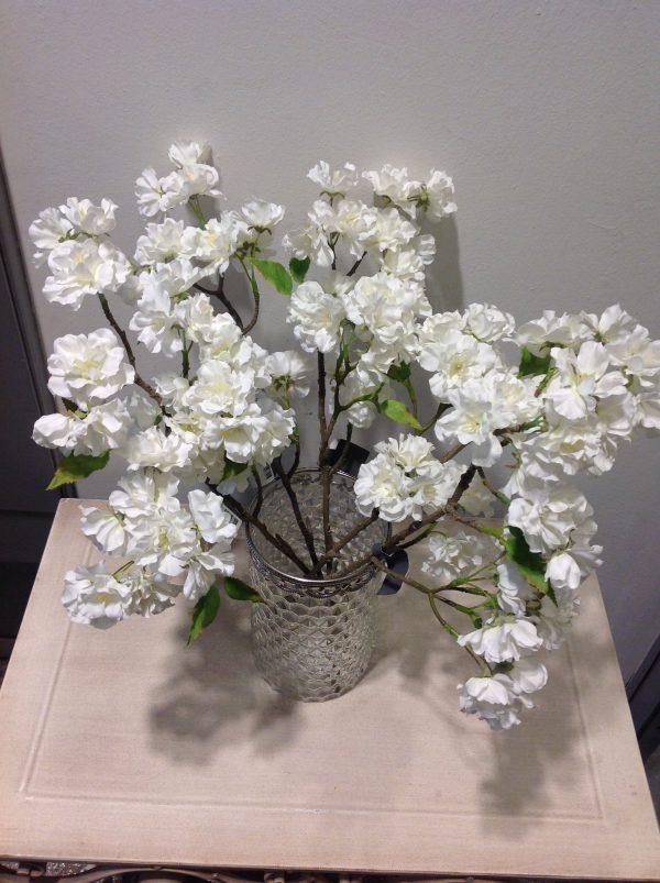 ramo ciliegio bianco corto