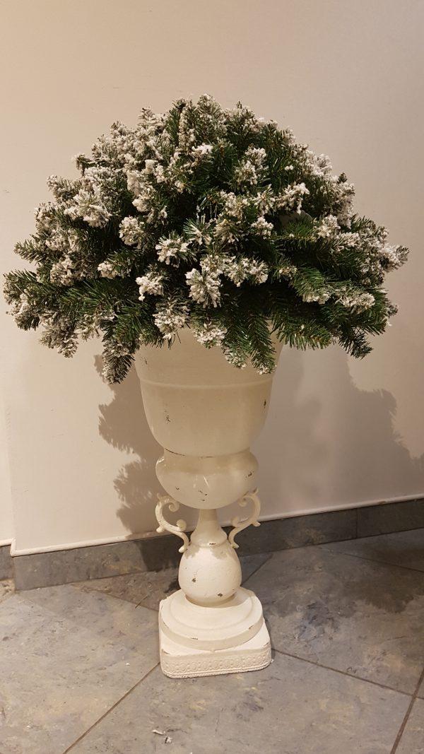 bosso rami di pino innevato con vaso