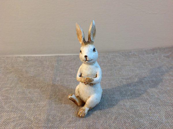 coniglietto seduto