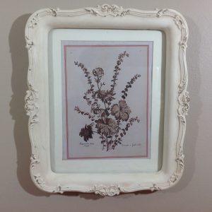 Angelica Home & Country Quadro con cornice panna serie botanica