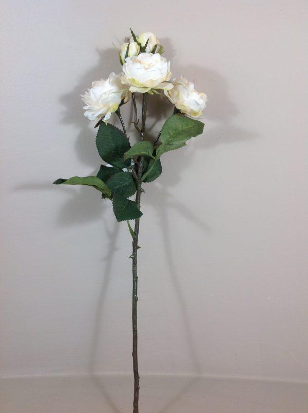 rosa bianca cuore salmone